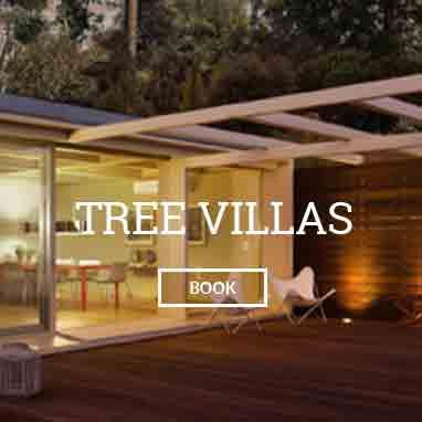 Tree Villas